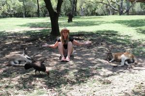 Work and Travel Reisende Sarah im Interview