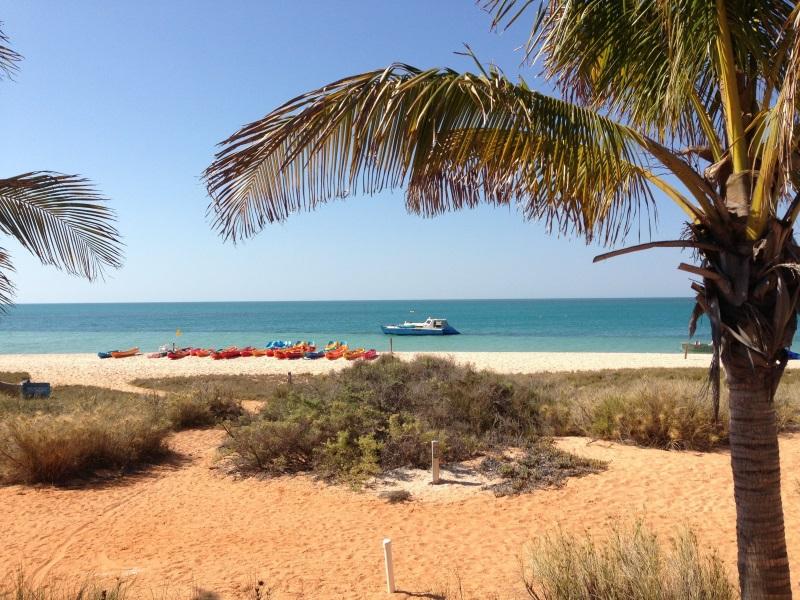Campingplatz am Strand von Monkey Mia