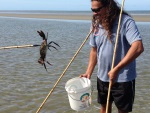 Auf Krabbenjagd in Kuyu Kuyu (Cooya Beach)