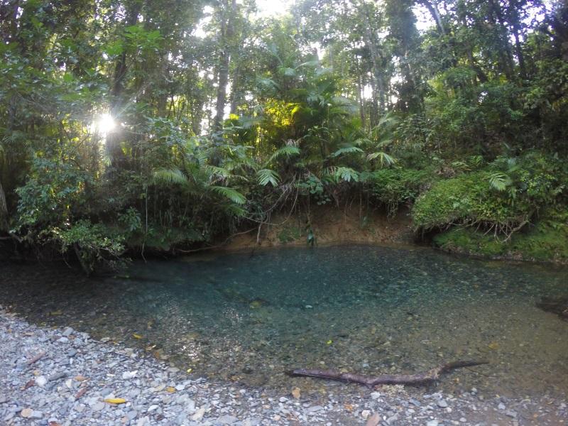 Heritage Lodge im Dschungel