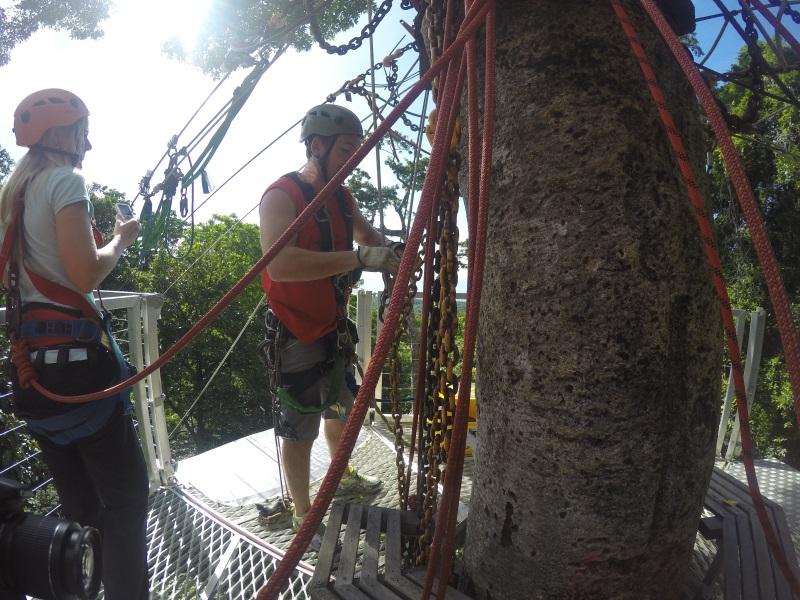 Jungle Surfing mit Sicherung