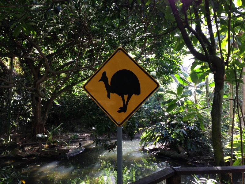 raod sign, port-douglas