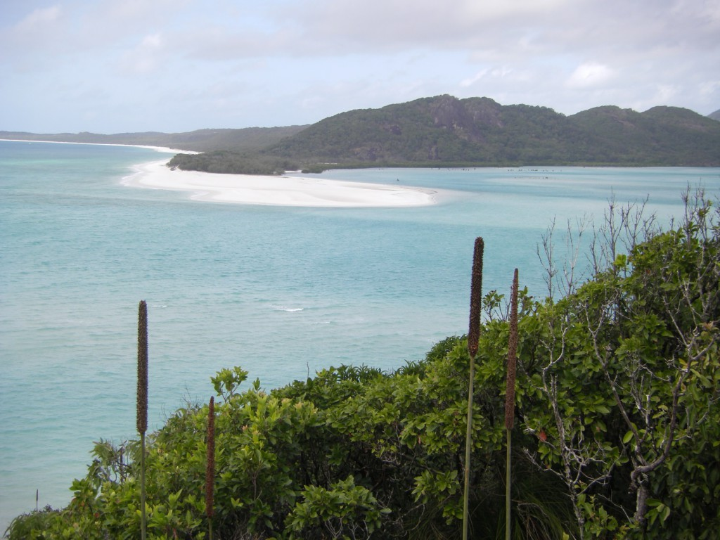 Wanderweg in den Whitsunday Islands
