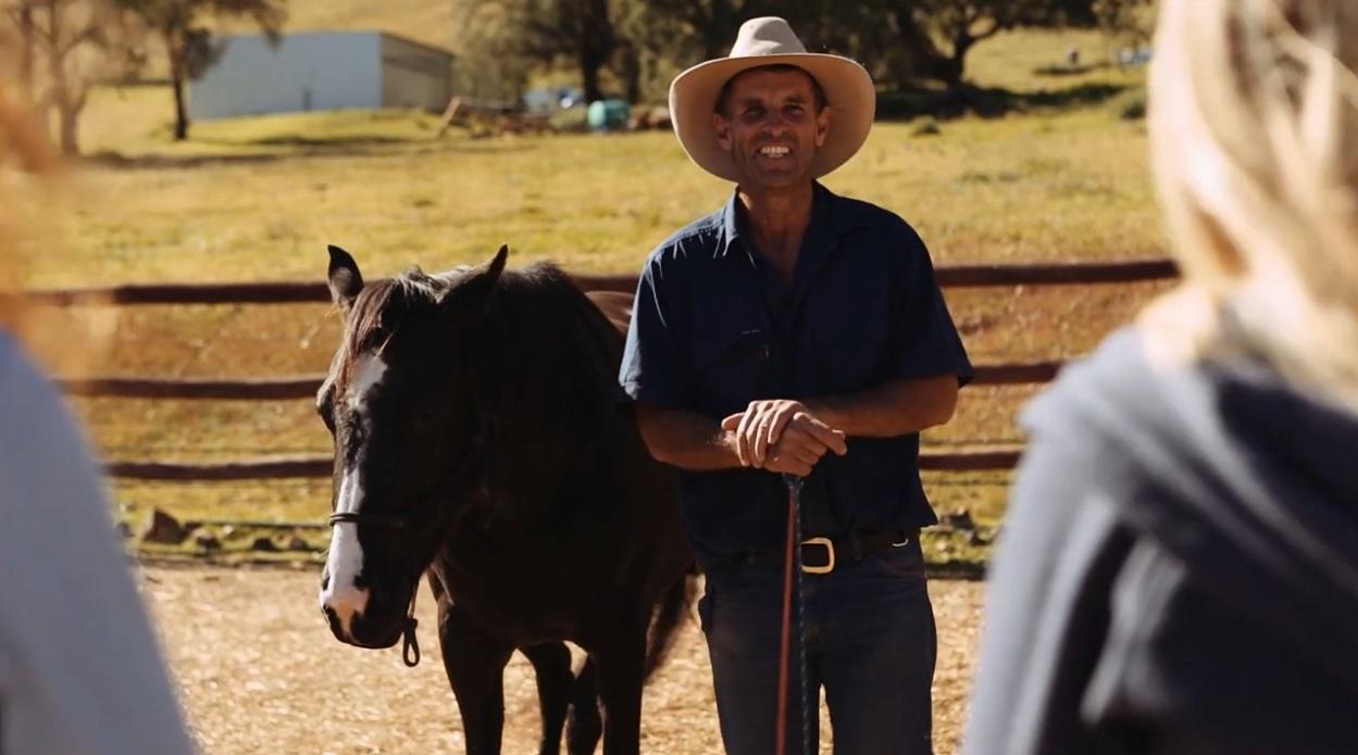 Pferd auf Ranch