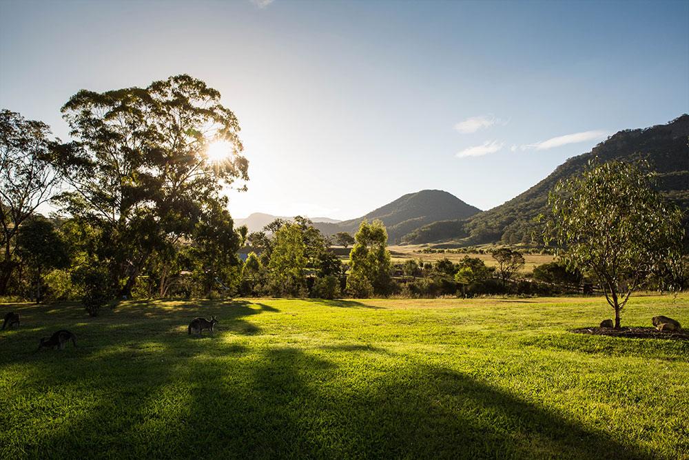 Wolgan Valley Blick von Veranda
