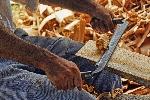 Mangel an Handwerkern in Australien bleibt bestehen