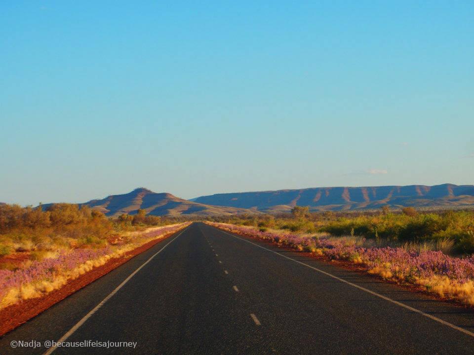 Highway auf Roadtrip durch Australien