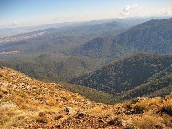 Aussicht vom Gipfel des Mt Buller