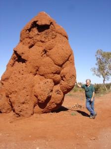 Mit riesigem Termitenhuegel auf der Fahrt zwischen Boulia und Alice Springs
