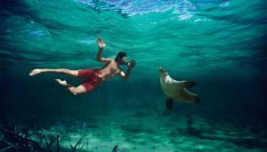 begehbares Aquarium auf Sentosa